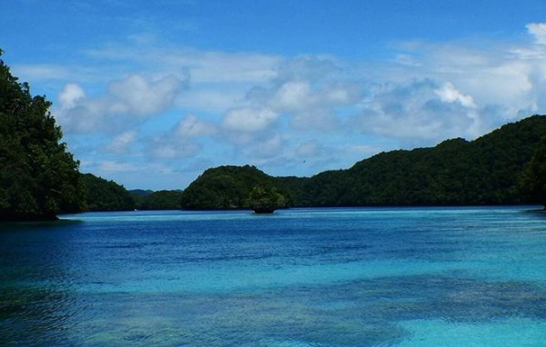 The water between the islands of the Republic of Palau is full of coral, marine mammals and other wildlife. <br>©2015 Susan Scott